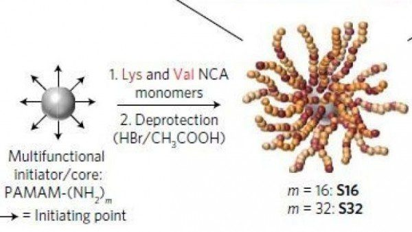 澳洲华裔女博士研发星形蛋白 可以杀灭超级细菌