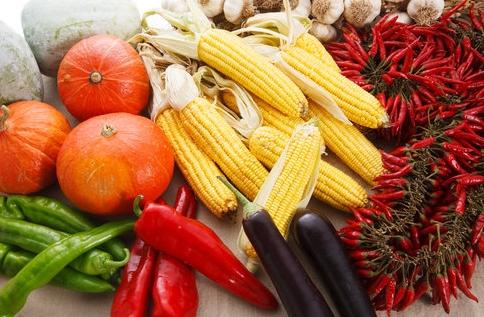 """""""黄金作物""""玉米维生素含量极高"""