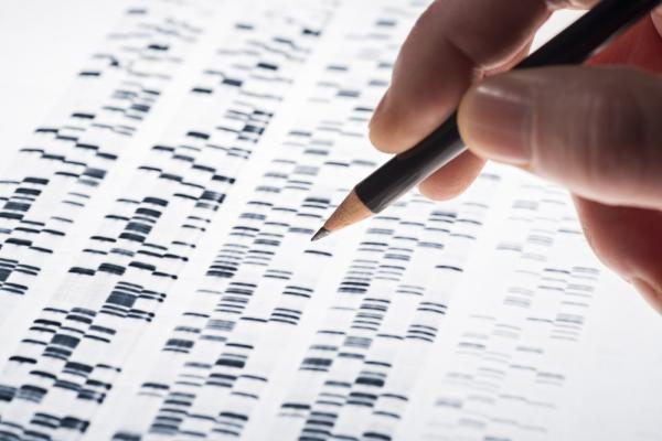 父母遗传突变可能增加孩子的ALS的风险