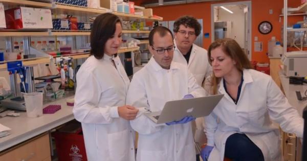 科学家成功地将计算机文件存储在DNA中
