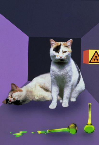 五种怪异量子效应:量子齐诺效应和真空双折射