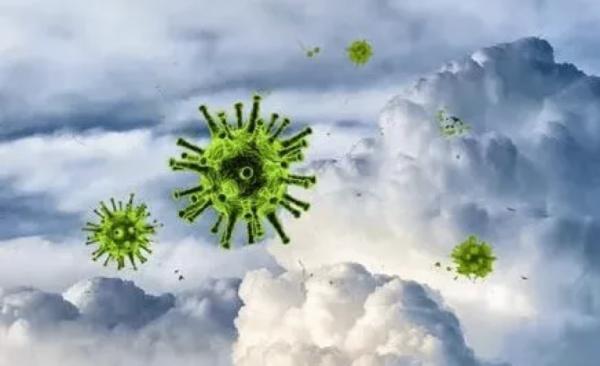 物种进化,病毒一路相伴