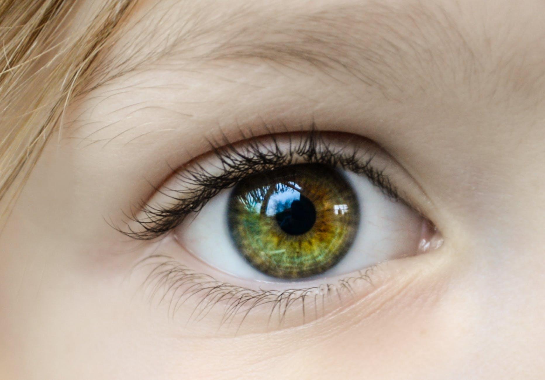 青光眼实际上可能是一种自身免疫性疾病